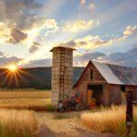 Farm that needs farm insurance.