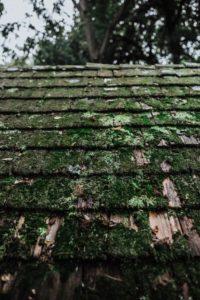 Bad roof.